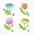 set of four spring flowers vector image vector image