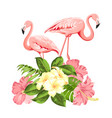 tropical birds and flowers fashion vector image vector image
