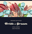 vintage card with protea and eucalyptus vector image vector image