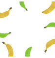 white background with watercolor banana vector image vector image