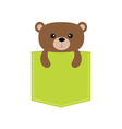 Bear in the pocket Cute cartoon character Dash vector image vector image