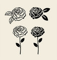 black rose silhouette single flower composition vector image vector image