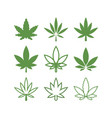 cannabis graphic design template isolated vector image vector image