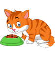 cartoon funny cat eating vector image