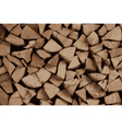 firewood vector image
