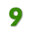 grass number nine green number 9 isolated on vector image vector image