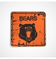 Old metal plate with bear vector image vector image