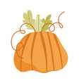 pumpkin vegetable food fresh isolated icon design vector image vector image