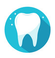 shiny healthy tooth in blue circle dentistry vector image vector image