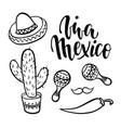 viva mexico hand drawn lettering phrase with vector image