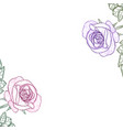 white background with watercolor rose vector image