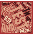 Paternity Test Are You The One text background vector image vector image