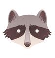 Cute cartoon raccoon vector image