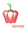 Hand Drawn Pepper Sketch vector image vector image