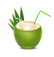 realistic 3d detailed coconut water drink vector image vector image