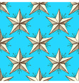 Sketch star in vintage style vector image vector image