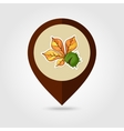 Chestnut with leaf mapping pin icon vector image vector image