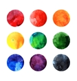 Colorful watercolor circles vector image