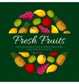Fresh fruits product poster design vector image vector image