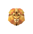 Leo golden orange mane low poly style of modern vector image vector image