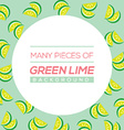 Many Pieces Of Green Lime vector image vector image