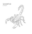 scorpion linear or tattoo sketch hand vector image