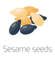 sesame seeds on a white background macro vector image vector image