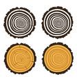 wooden cut a tree log with concentric rings vector image