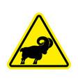 attention ram caution farm animal sheep yellow vector image vector image