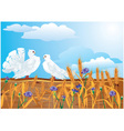 Couple of white pigeons vector image vector image