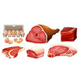 different types of fresh meat vector image vector image