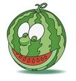 Fresh watermelon cartoon vector image vector image
