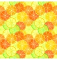 Orange and lime slices seamless pattern vector image