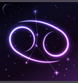 space symbol of cancer of zodiac and horoscope vector image