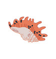 tropical shell marine underwater nature aquatic vector image vector image