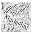 Affiliate Marketing Staying Away From Scams Word vector image vector image