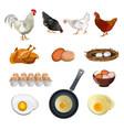 chicken farm set vector image