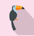 exotic toucan icon flat style vector image vector image