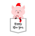 happy new year pig face head in pocket santa vector image