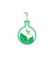leaves natural formula logo icon vector image