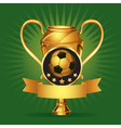 Soccer golden award trophy and medal vector image vector image