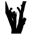 Tree Cutter vector image