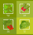 vegan farmer market card with fresh vegetables vector image vector image