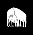 white baby and mother elephant vector image vector image