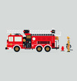 fire truck and firefighters vector image