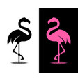 flamingo silhouette vector image vector image