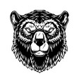 head grizzly bear in vintage monochrome style vector image vector image