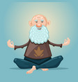 old man yoga grandfather in asana position vector image vector image