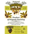 olive oil banner of natural organic food design vector image vector image