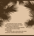 palm tree silhouettes vector image vector image